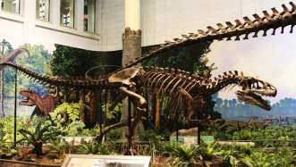 Allosaurus_side1